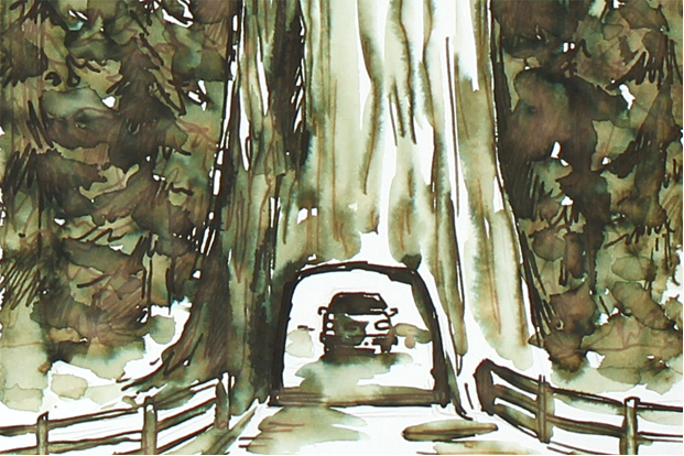 Mutli-tone ink wash made using Noodler's Sequoia Green.