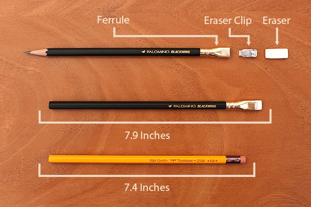 Palomino Blackwing Appearance and Length